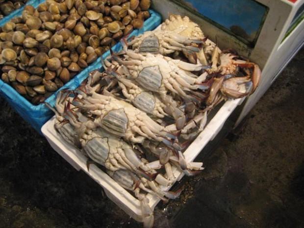 Yangdong Market3