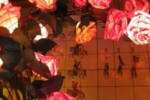 Lantern Rose