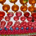 Korea Buddhist lotus lanterns