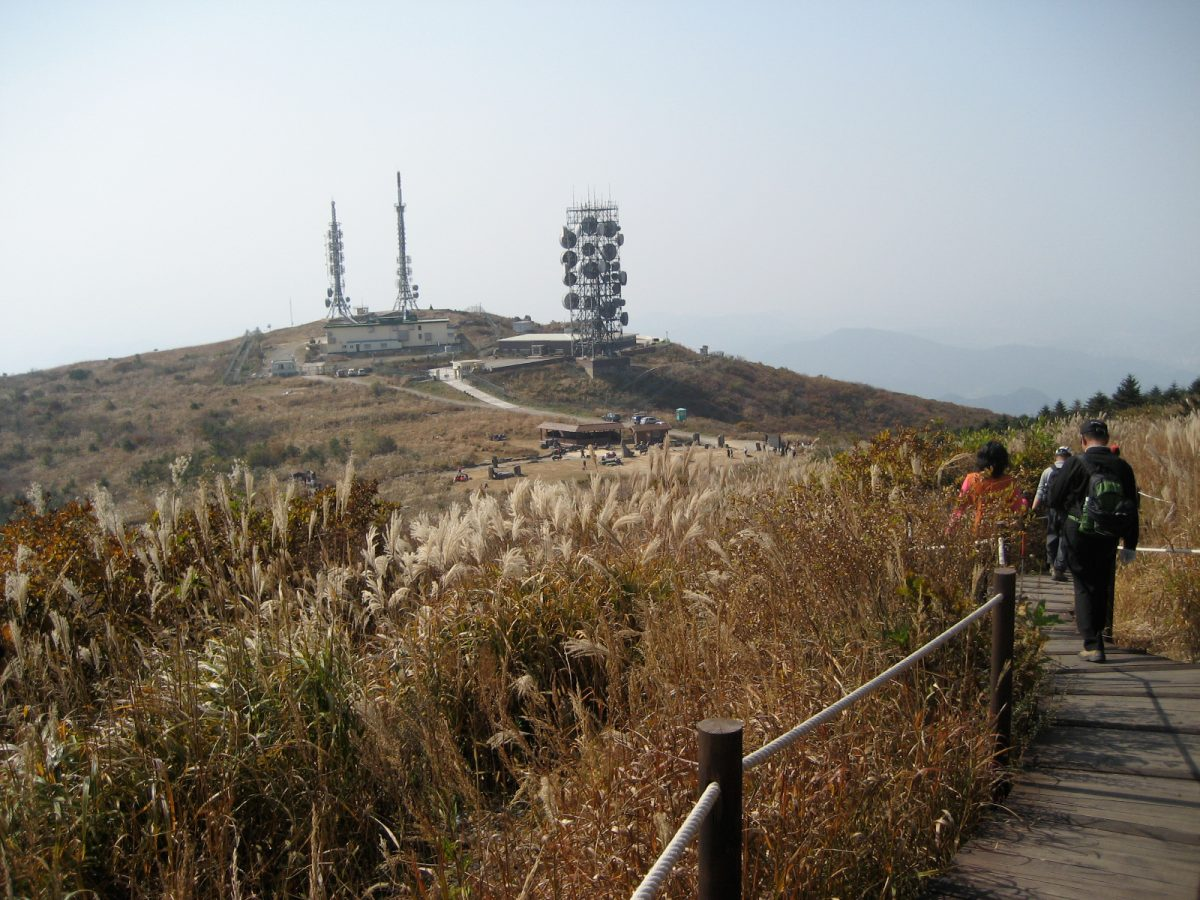 a picture of the cell phone tower atop meudung mountain in korea